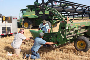 Grubb and Sons Harvesting